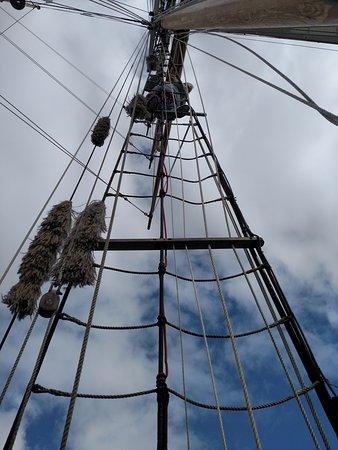 Paihia, نيوزيلندا: Climbing the rigging.