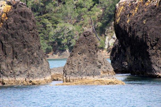 Paihia, نيوزيلندا: Just sailing along.