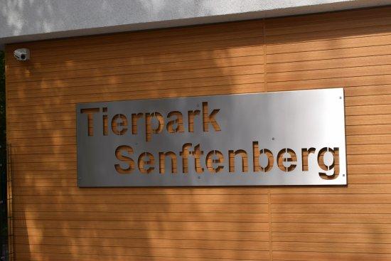 Restauracje - Senftenberg