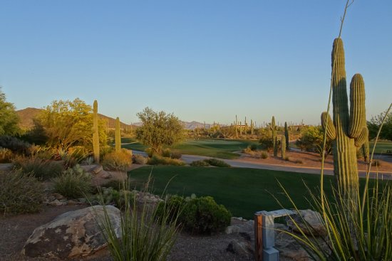 Marana, AZ: Dove Mountain Golf Course