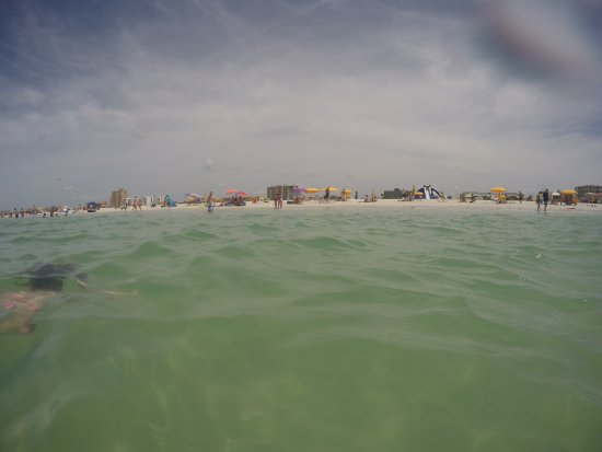 Treasure Island, FL: photo3.jpg