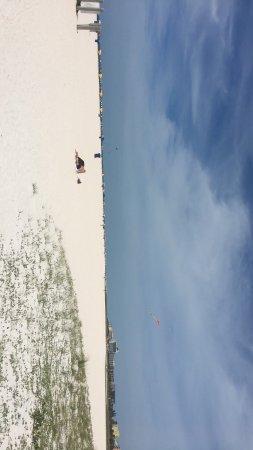 Treasure Island, FL: photo6.jpg