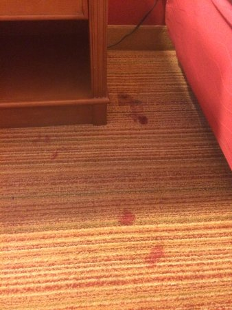 Residence Inn Cherry Hill Philadelphia: Blood on the carpet #2