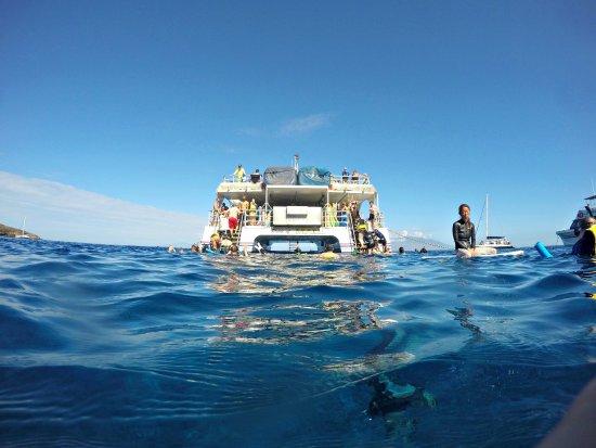 Wailuku, Hawái: Lifeguard on Duty