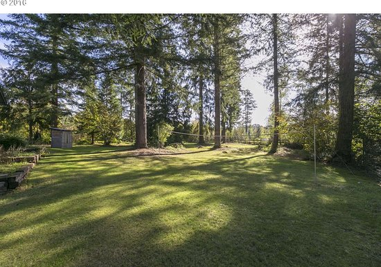 Battle Ground, WA: Additional acreage with evergreens.