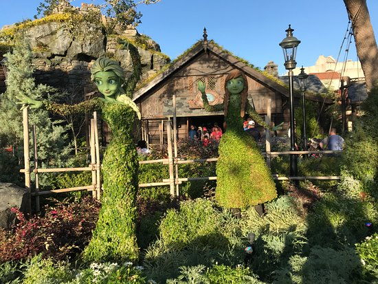 EPCOT : The International Flower & Garden Festival