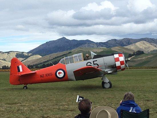 Omaka Aviation Heritage Centre: war birds