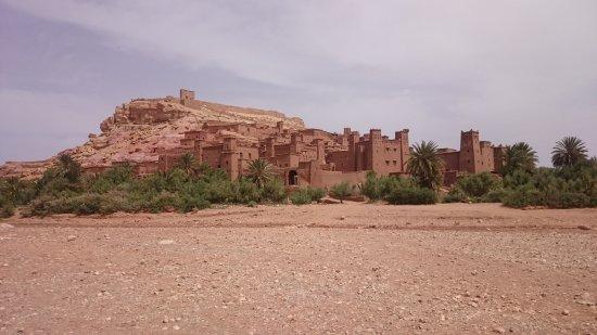 Marrakech Expedition: DSC_3395_large.jpg
