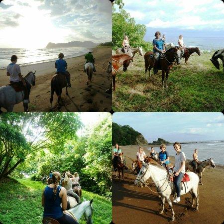 Playa Samara, Costa Rica: Tour cabalgata, se parte de la experiencia con nosotros!