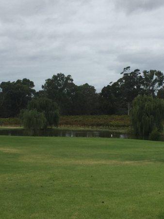 Суон, Австралия: photo4.jpg