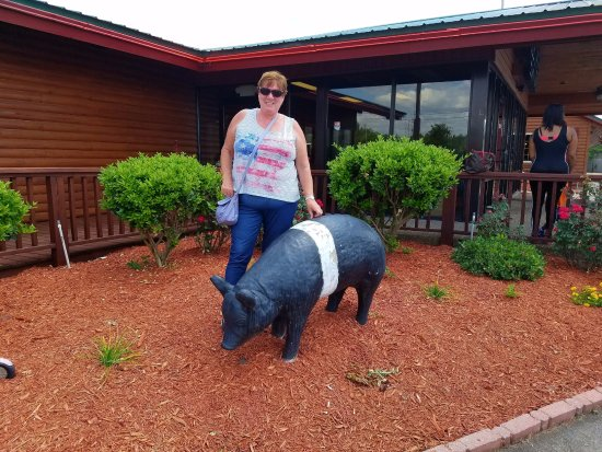 Tifton, GA: Photo op with the garden pig
