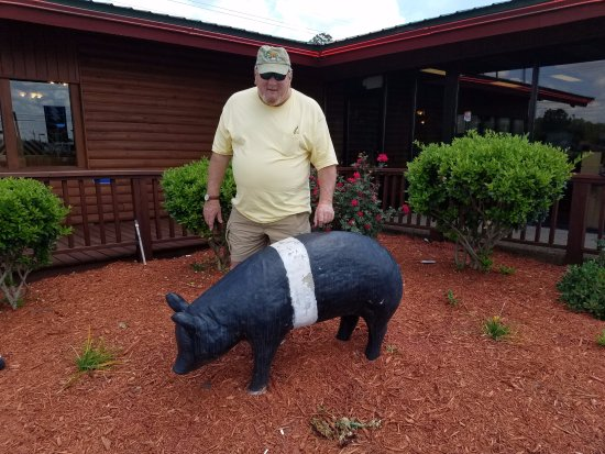Tifton, جورجيا: Photo op with the garden pig