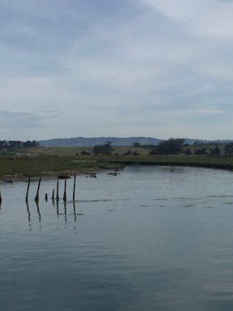 Moss Landing, CA: The beauty of the rolling hills and the slough