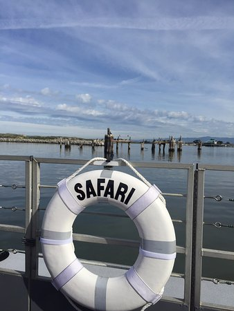 Moss Landing, CA: View from the Elkhorn Slough Safari