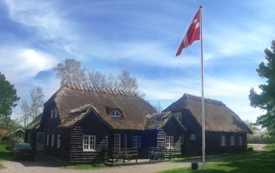 Skaelskoer, Danimarca: Guldberghus med dannebrog
