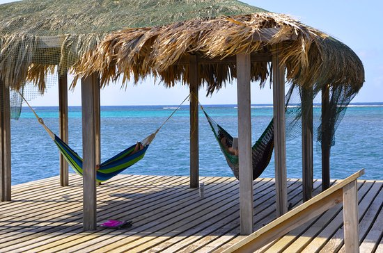 Sundancer Cabanas Roatan Beach Front: Sundancer's beautiful reef, pier and nap time in a hammock.