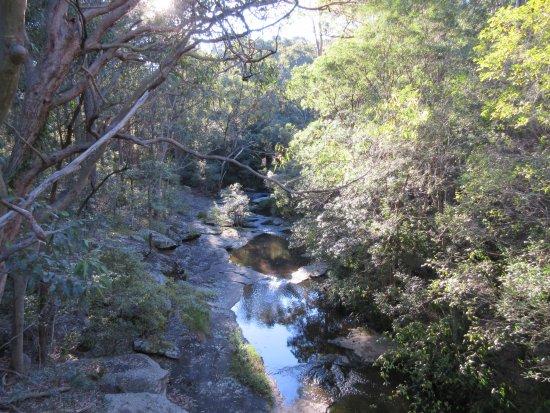 นิวคาสเซิล, ออสเตรเลีย: Creek
