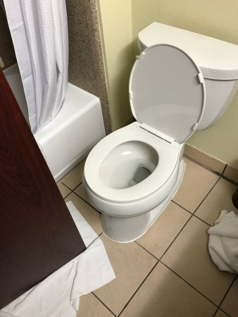 BEST WESTERN PLUS Lake County Inn & Suites: Door almost touches toilet