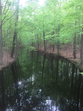 Chesapeake, VA: Northwest River Park