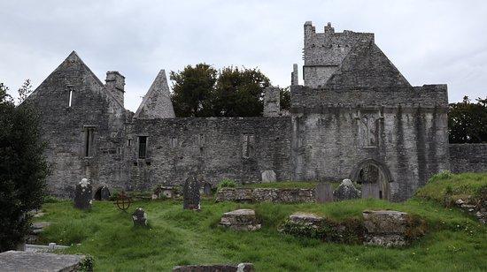 Muckross Abbey : photo6.jpg