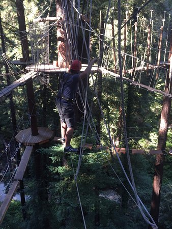 Mount Hermon, CA: Sequoia Adventure - wobbly ropes, but you are harnessed to a safety line