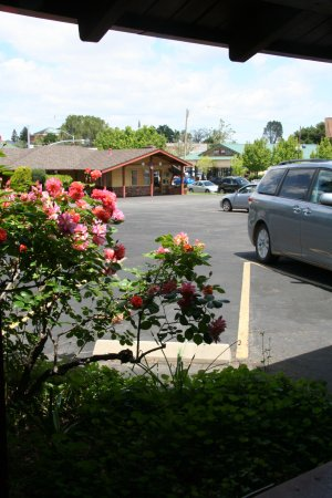 Melody Ranch Motel: view of the parking area