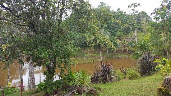 Foto de Boca Tapada
