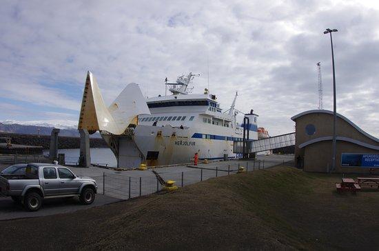 Vestmannaeyjar, Island: Ferry arriving at port