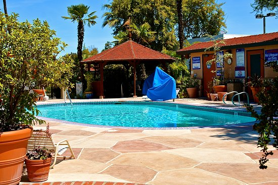 Adelaide Inn: Nice pool, clean and accessible