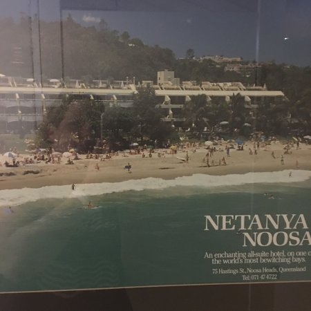 Netanya Noosa: photo3.jpg