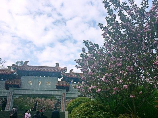 Langzhong 사진
