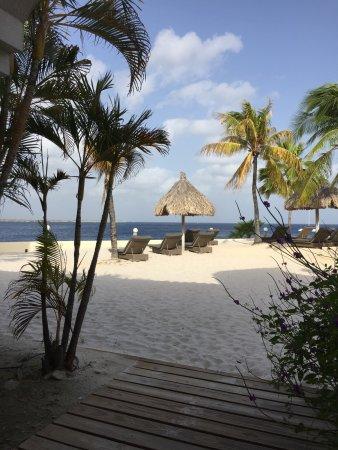 Kralendijk, Bonaire: photo6.jpg