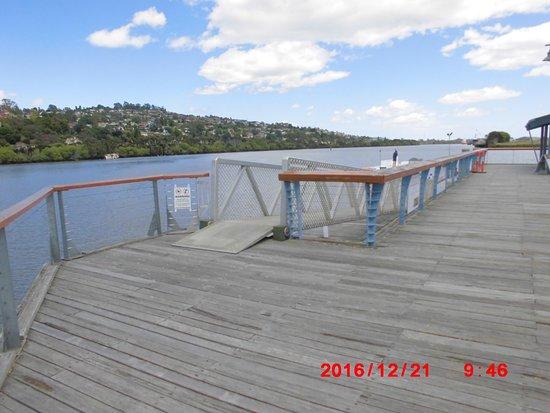 Tamar River Photo