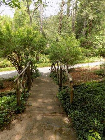 Newnan, GA: Garden bridge.