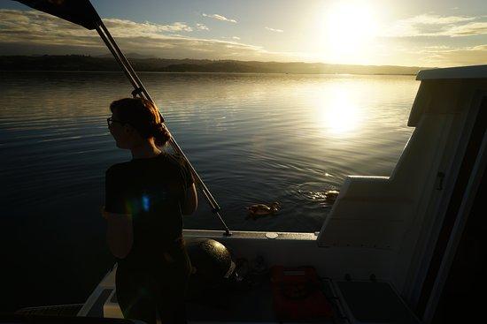 Knysna Houseboats - Day Charters: Sunset - Lake Brenton
