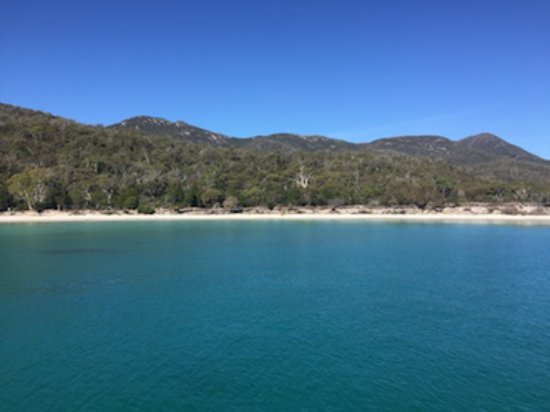 Coles Bay, Australia: Wineglass Bay beach - the boat moored in the Bay while we had lunch