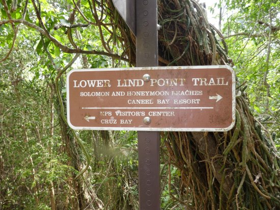 Caneel Bay, St. John: Signs along the way will get you to Honeymoon Beach