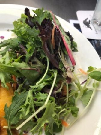 Wallacia, Australia: This was our side salad. Just lettuce with a touch of carrot. No dressing.