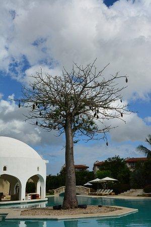 Снимок Swahili Beach Resort