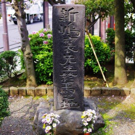 Oiso-machi Photo