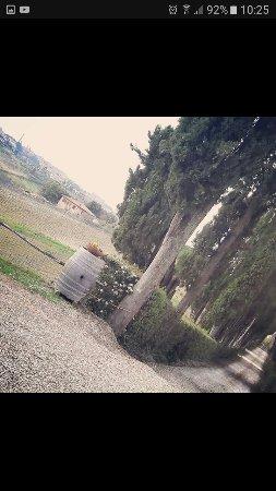 Az. Agr Castel di Pugna