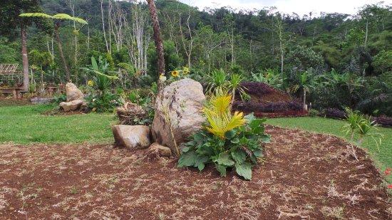 Candidasa, Indonesia: Heaven Hill mooie tuin