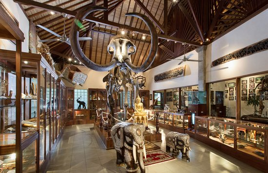 Tegalalang, Indonesia: Elephant Museum