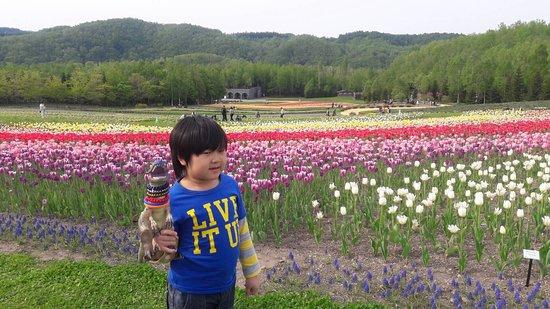 Takino Suzuran Hillside National Park: 1492939057139_large.jpg