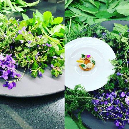 Restaurant Gastronomique : Cueillette d'Herbes