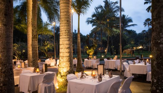 Tegalalang, Endonezya: Palm Grove Dining