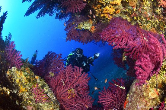 Blunauta Diving Center Milazzo
