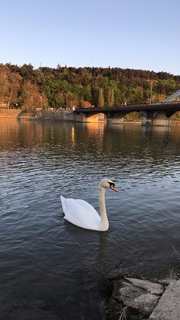 Piestany, Slovakia: another goes near the Colonnade bridge