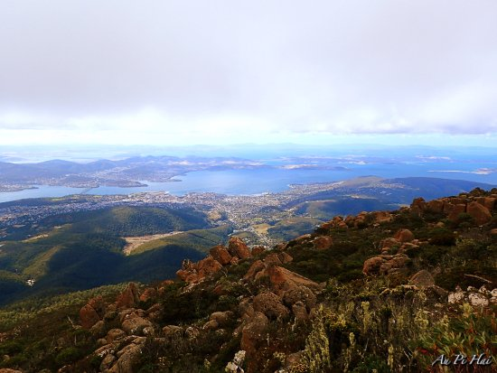 Mount Wellington: awesome view from the top