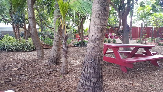 Davie, FL: The seating area under the Trees.